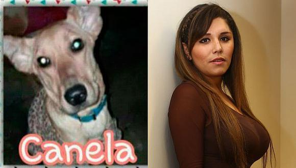 Lady Guillén: programa es denunciado por 'adoptar' perro y abandonarlo