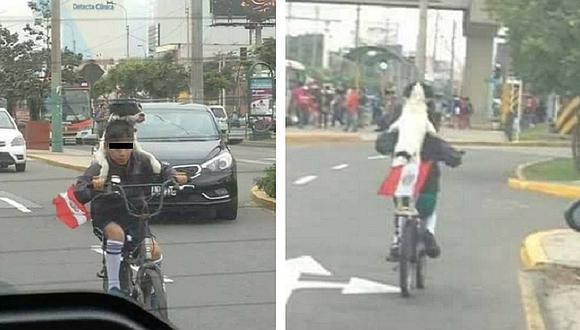 Fiestas Patrias: niño pasea en bicicleta junto a su perrito y se hace viral en Facebook (FOTOS)