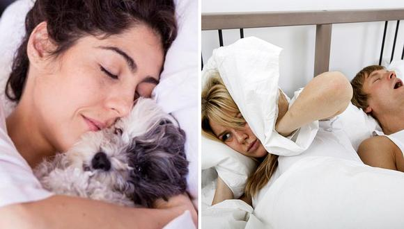 Mujeres concilian mejor el sueño con sus mascotas que con sus parejas