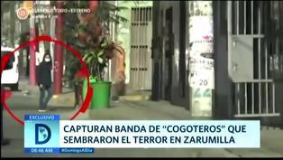 """Capturan a banda de """"cogoteros"""" que sembraron el terror en Zarumilla"""