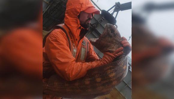 La anguila lobo posee mandíbulas poderosas con las que aplasta a sus presas. | Foto: Nate Ethan Iszac/Facebook