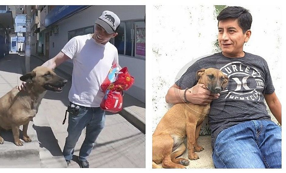 Huaracino reclama a su perrita 'callejera' adoptada por Steve-O (FOTOS)
