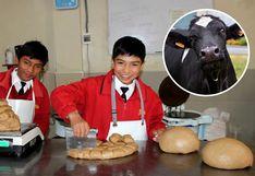 Escolares de Huancavelica elaboran 'superpan' para combatir la anemia a base de sangre de bovino