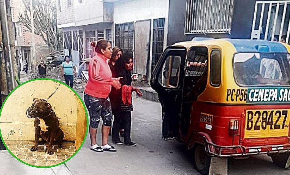 Perro desfigura rostro y deja en delicada situación a mujer comerciante
