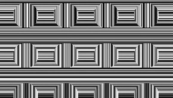 El reto consiste en encontrar todas los círculos en menos de 15 segundos. (Foto: Twitter/Bernie'sTweets)