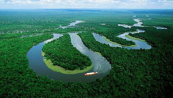 Amazonía peruana: deforestan 45.000 hectáreas de bosque en lo que va de 2017