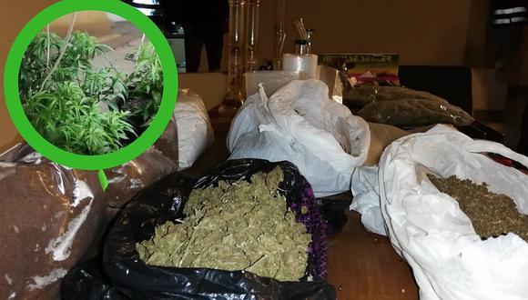 Policía allana exclusiva casa en La Molina donde se producía marihuana