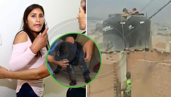 Madre torturó a sus hijas metiéndolas en tanque de agua y lanzó a perrito del tercer piso
