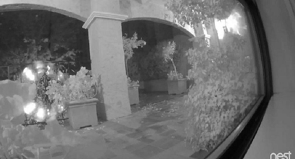 Facebook: pareja pasan el susto de sus vidas al encontrar esto en su jardín (VIDEO)