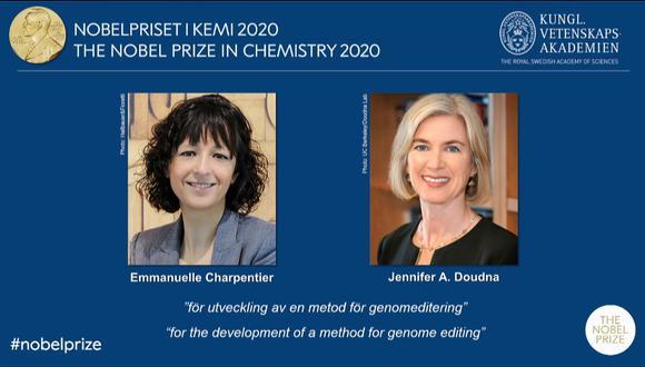 En junio de 2012, las dos genetistas y su equipo describieron en la revista Science una nueva herramienta con la que se podía simplificar el genoma. El mecanismo se llama Crispr/Cas9 y es conocido como tijeras moleculares. (Captura / YouTube / Nobel Prize)