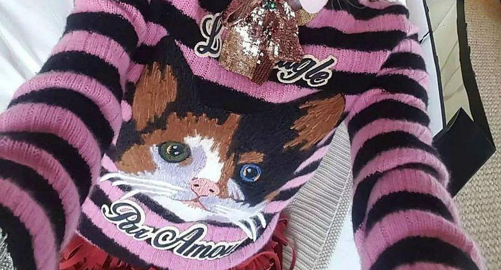 ¡Prepárense los 'Pet-Lovers': Los Gatos se posicionan como tendencia para la próxima temporada! [FOTOS]