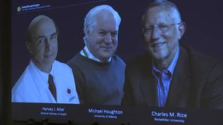 En plena pandemia Nobel de Medicina para tres descubridores del virus de la hepatitis C