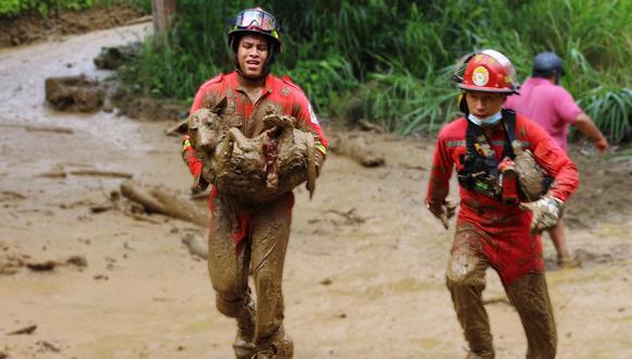 Cusco: Bomberos rescatan a perritos arrastrados entre los escombros de huaico (Foto: Facebook: EL K'intu)