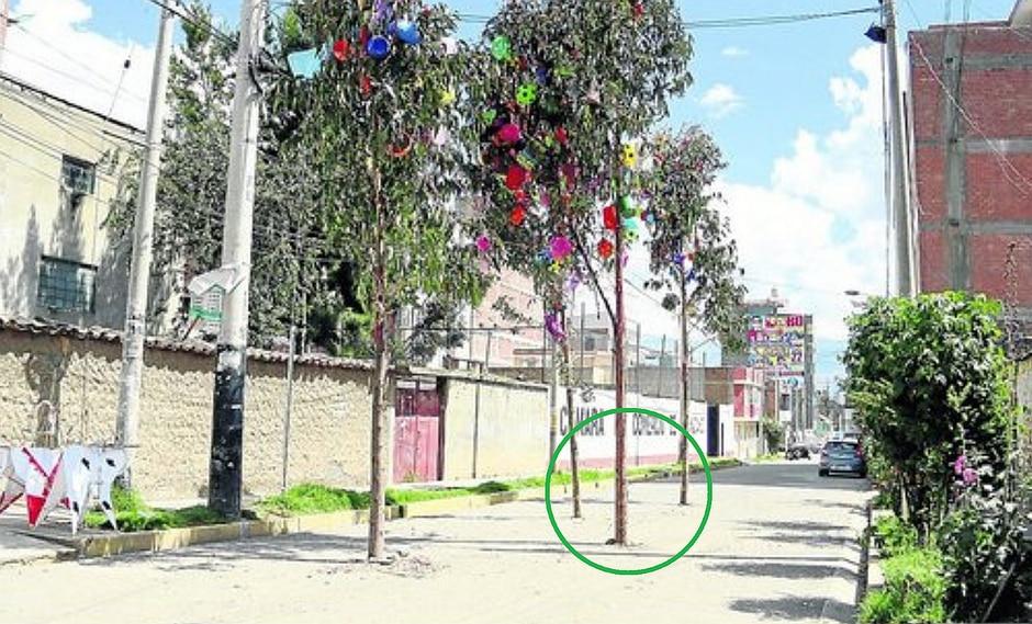 Vecinos destruyen pista y plantan cortamontes para hacer fiestas