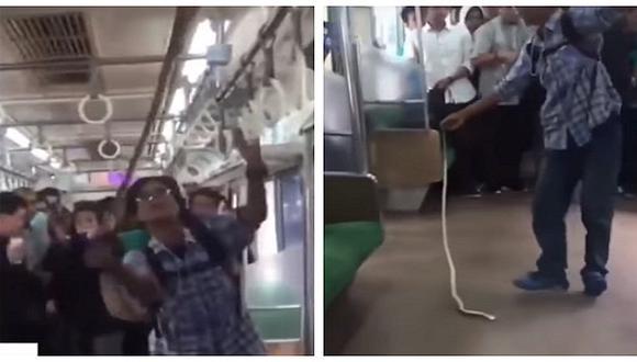 Valiente hombre se enfrenta a serpiente que apareció en pleno viaje en tren (VIDEO)