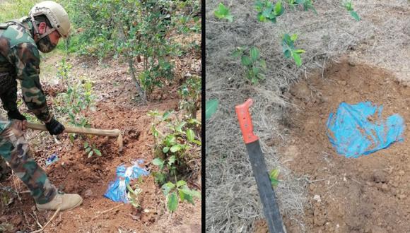 """Ayacucho: """"Sinchis de Mazamari"""" y Fiscalía hallan más de 400 kilos de cocaína enterrados en zona Vraem (Foto: MP)"""