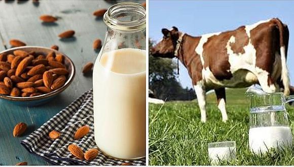Conoce los beneficios de la leche de almendras vs la leche de vaca