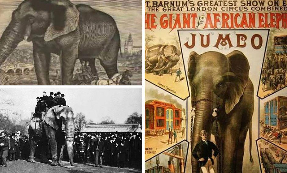 La desgarradora historia de Jumbo, el elefante que inspiró Dumbo de Disney (FOTOS)
