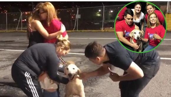 El emotivo reencuentro de refugiados venezolanos con su perro │VIDEO