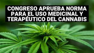 Congreso aprobó ley que autoriza el cultivo de cannabis medicinal
