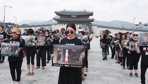 Animalistas toman Seúl para acabar con criminal consumo de carne de perro
