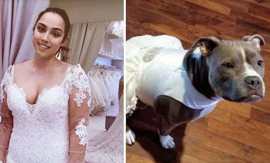 Mujer compra vestido de novia a su perrita para que la acompañe el día de su boda