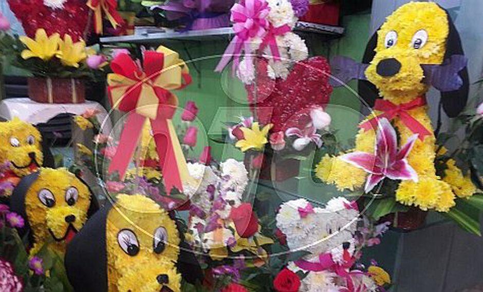 Perritos florales son sensación por San Valentin en Mercado Mayorista de Flores (FOTOS)