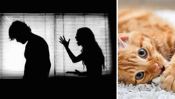Mujer mata a su esposo por abusar de su gato