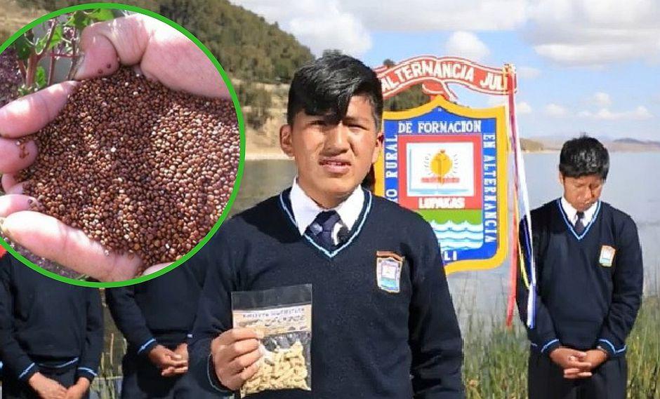 """Escolares de Puno crean """"chizitos"""" de cañihua para combatir la anemia (VIDEO)"""