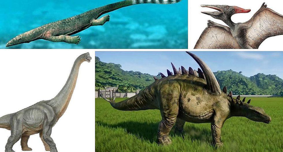 ¿Qué tipo de dinosaurios existieron? | FOTOS