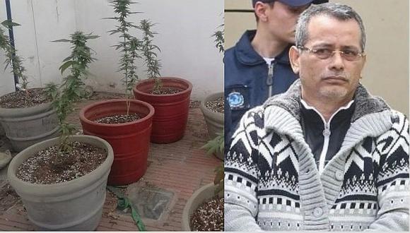 Hijo de Rodolfo Orellana fue detenido por presunto delito de tráfico ilícito de drogas y usurpación agravada