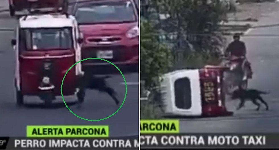 Mototaxi vuelca tras ser impactada por un perro│VIDEO