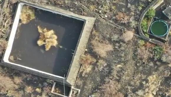 Se ha viralizado la imagen de un gato atrapado en un estanque rodeado de lava.