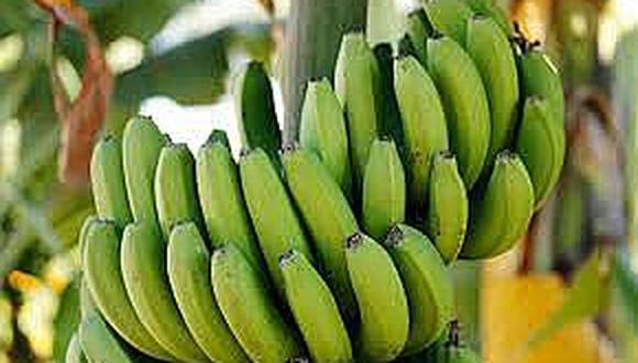 Científico elabora un alimento contra la diabetes a base de plátano verde
