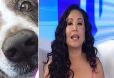 Janet Barboza descubrió quién mató con veneno a su perrito   VIDEO