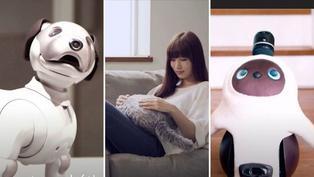 ¿Robots reemplazarían a las mascotas en el futuro?