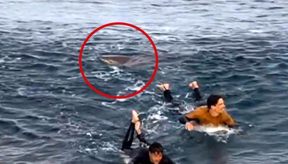 Un tiburón atacó a un joven surfista, en Australia. Una persona logró captar al escualo. (Foto: captura de video)