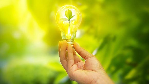 Descubren nueva manera de convertir luz solar en energía ¡con plantas!