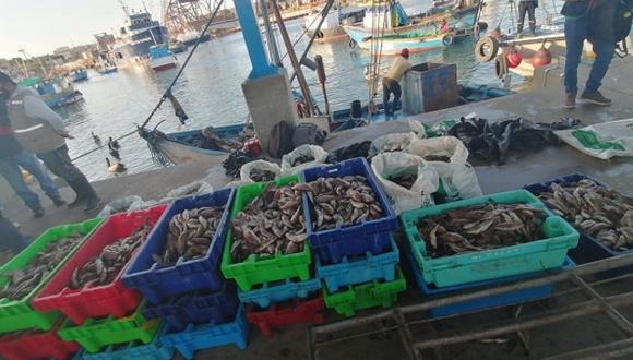 Piura: Fiscalía intervino una embarcación que realizaba pesca ilegal en mar de Talara (Foto: Ministerio Público)