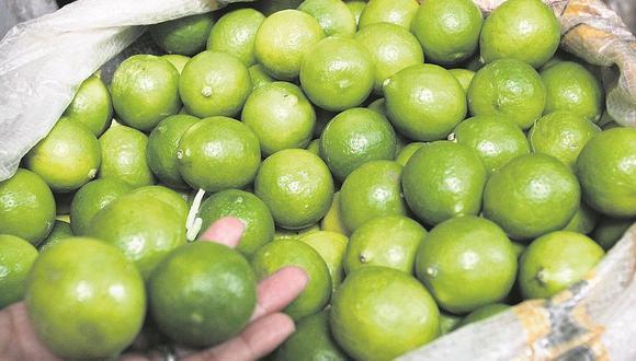 Limón: anuncian que precio del kilo bajó considerablemente