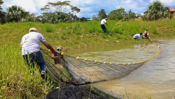 Loreto: Productores acuícolas accederán a pasantías gratuitas, anunció el ministro de la Producción, José Luis Chicoma. (Foto: Produce)