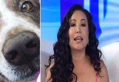 Janet Barboza descubrió quién mató con veneno a su perrito | VIDEO