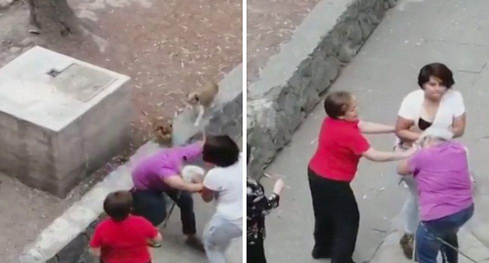 """Joven """"jala de los pelos"""" a abuelita que paseaba con sus perros (VIDEO)"""