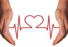 Día Mundial del Corazón: ¿Cómo evitar enfermedades cardiovasculares?