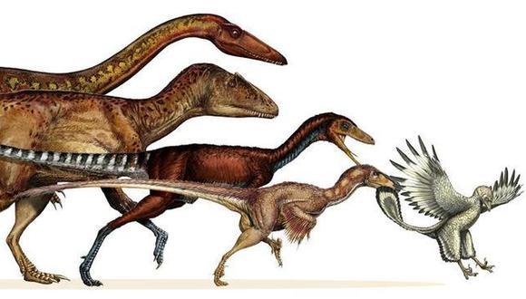 Los dinosaurios nunca se extinguieron, porque ahora viven entre nosotros