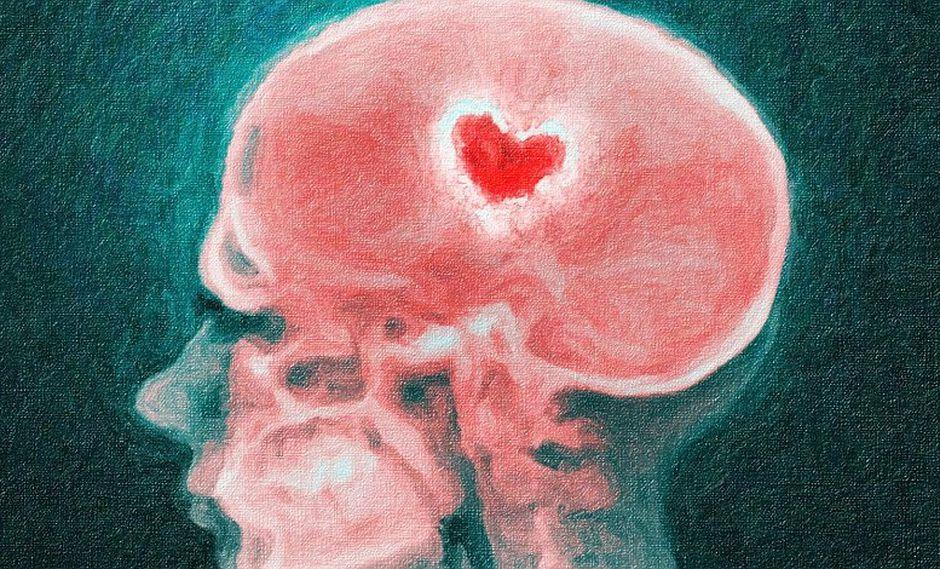 Averigua qué sucede en tu cerebro mientras estás enamorado, según expertos