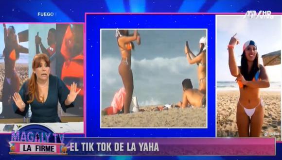 Fotos y video: ATV