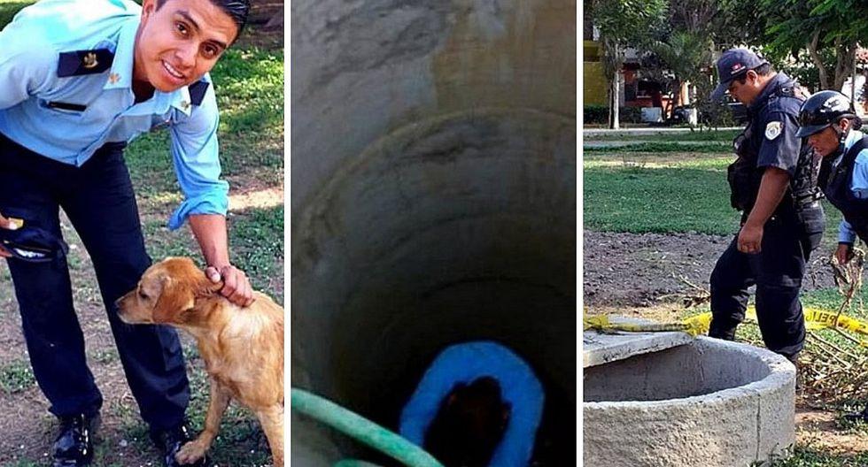 Perrito que cayó a pozo de 12 metros de profundidad es rescatado