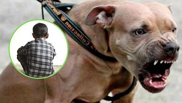 Perros pitbull destrozan rostro de niño y necesita ser trasladado a Lima (FOTO)