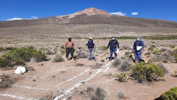 Tacna: Agro Rural inicia en simultáneo la construcción de cobertizos en tres provincias de Tacna para proteger más de 6 mil 500 cabezas de ganado. (Foto: Agro Rural)